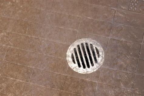 bathroom water drain free image of shower drain