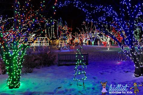 cool things to do with christmas lights photo album best