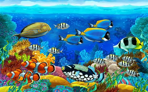wallpaper colorful fish and interactive water tropical fish full hd fond d 233 cran and arri 232 re plan
