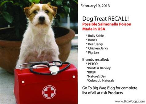 bone recall treat recall bones bully sticks pig ears beef chicken j big wags