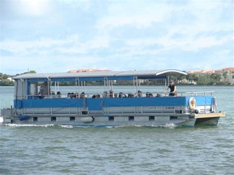 indian river boat tours recent manatee encounter picture of indian river lagoon