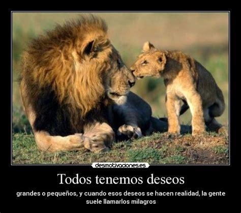 imagenes con leones cristianas im 225 genes y carteles de leones pag 6 desmotivaciones