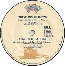 cat traveling wilburys