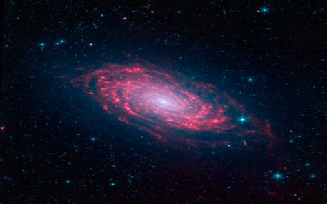 sunflower galaxy sunflower galaxy wallpaper 896809