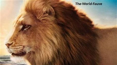 film le lion de kessel le lion blog de the world fauve