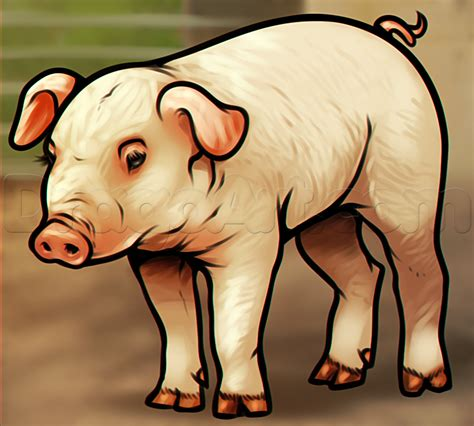 how to a pig how to draw a pig step by step farm animals animals free drawing tutorial