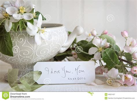 1800flowers Gift Card - gift card with blossom flowers in vase stock image image 49221427