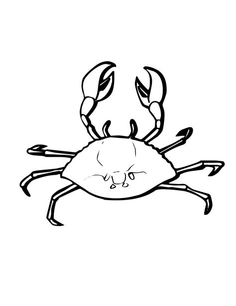 blue crab coloring page sand crab clipart 43