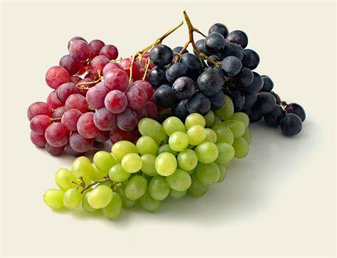 imagenes de uvas en hd frescos continente