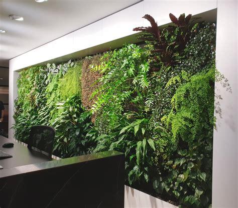 emirates house fytogreen green roofs australasia