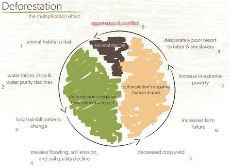 deforestation diagram deforestation the multiplication effect simcenter