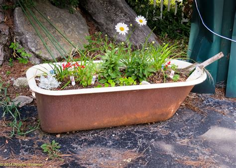 bathtub garden what to do with your old unusable bathtub seattle