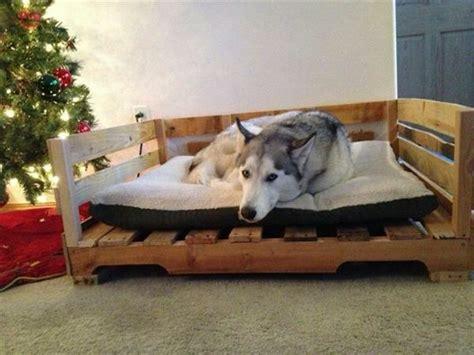 hunde betten diy holz hundebetten aus europaletten