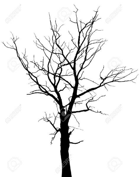 Dead Oak Tree Drawings Www Pixshark Images