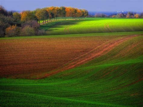 Green Scenery Wallpaper