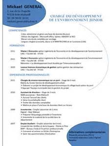 Pro Resume Sles by Exemple Cv Avec Projet Professionnel