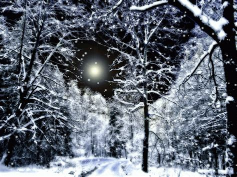 snowy winter night pictures   images  facebook tumblr pinterest  twitter