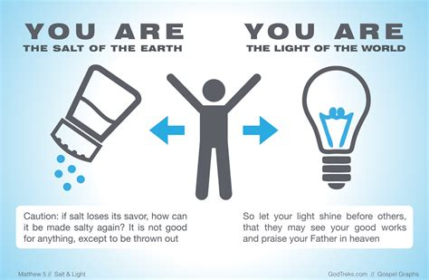 salt and light bible salt and light