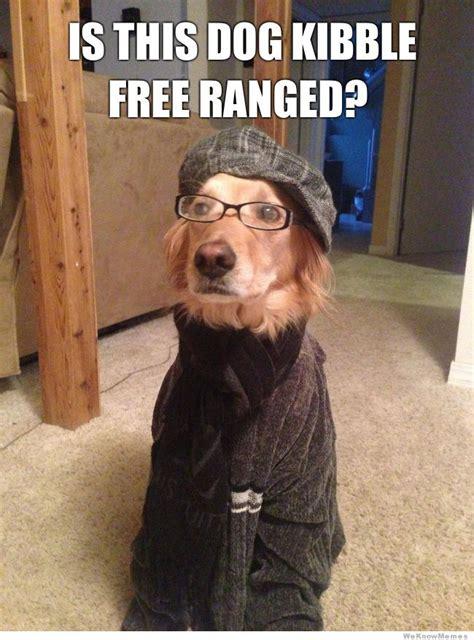 Dog Food Meme - funny dog memes the ultimate collection dog training