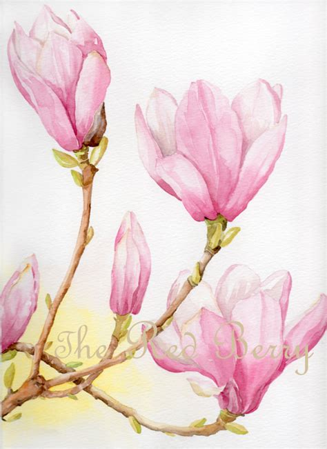 flower watercolor magnolias floral watercolor by theredberry 37 12 ideas for my