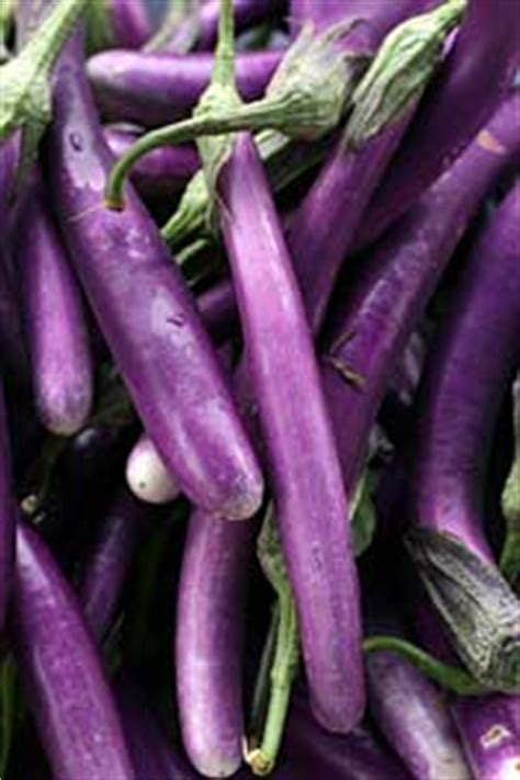 eggplant   choose eggplant ingredient