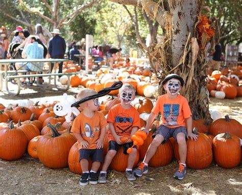 pumpkin patch los angeles best pumpkin patches in orange county 2016