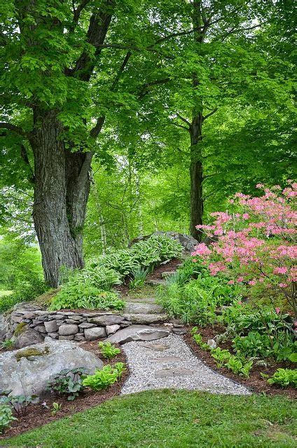 beautiful backyard landscaping 1000 images about landscaping on pinterest dry creek