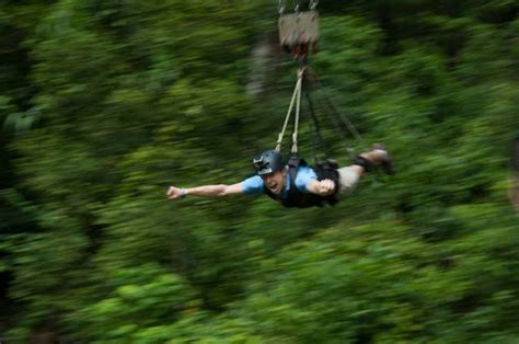 swinging holiday packages cairns info com holiday packages tours minjin swing