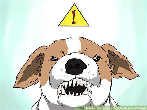 how to calm an aggressive how to remain calm around aggressive dogs with pictures