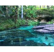 Rock Springs  Sorrento Florida