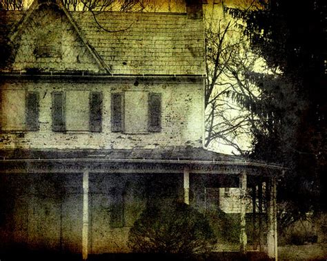 themes of southern gothic literature faulkner o connor blog