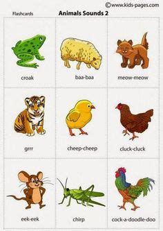 igbo names for animals west africa animal igbo names for animals west africa animals
