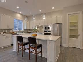 contemporary kitchen with undermount sink amp pendant light portland cabinets modern design ideas