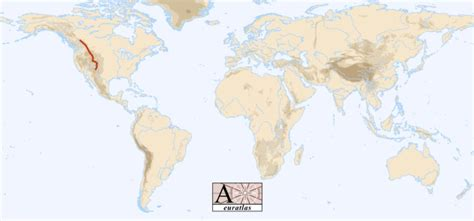 world map showing rivers and mountains world atlas the mountains of the world rocky mountains