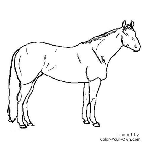coloring pages of quarter horses free coloring pages of back of quarter