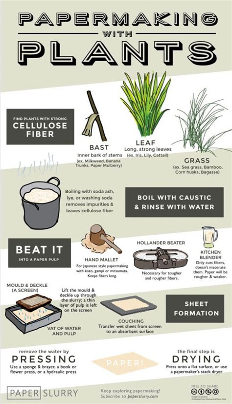 Handmade Paper Manufacturing Process - papermaking with plants illustrated infographic