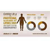 R&233partition Glucides/lipides/prot&233ines Suivant La Morphologie
