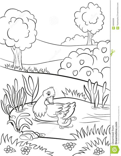 coloring pages ducks in a pond the gallery for gt flying duck sketch