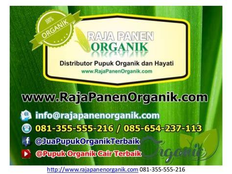 Harga Pupuk Organik Cair Em4 081 355 555 216 t sel pupuk tanaman air jual pupuk