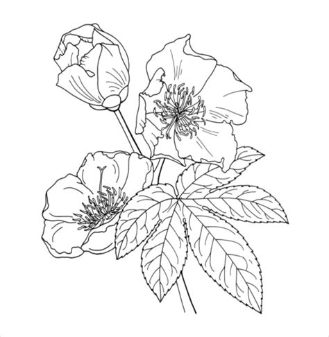 coloring pages flowers pdf realistic flowers coloring page coloring pages free flowers