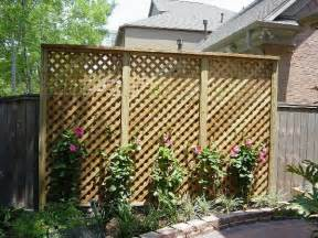 trellis privacy fence ideas privacy trellis backyard privacy