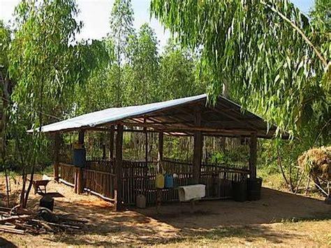 pig farm house design natural pig farming pig housing design