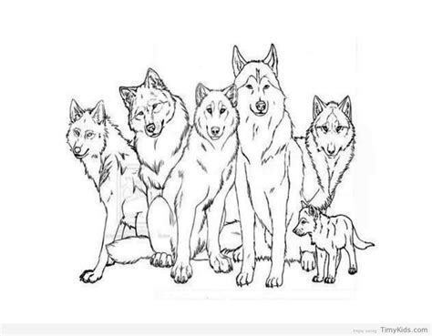 coloring pages with wolves wolf coloring pages for kids timykids