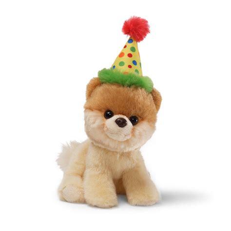 boo the world s cutest itty bitty boo birthday hat boo the worlds cutest fox and lantern