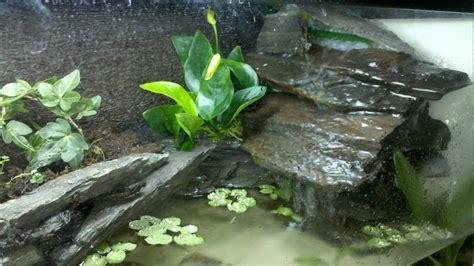 community mein aquarium aquayoude
