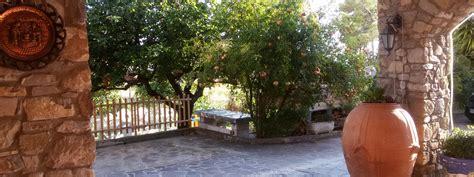 il giardino dei limoni nel giardino dei limoni bed and breakfast b b agnone cilento