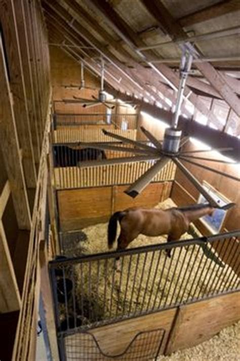 best horse stall fans 1000 images about dream barn on pinterest horse barns