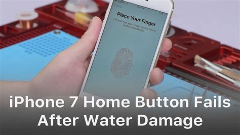 repair iphone  home button  working  water