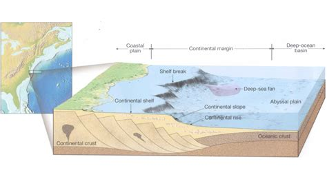 Continental Shelf Slope Rise by Quiz 2 At Columbus State Studyblue