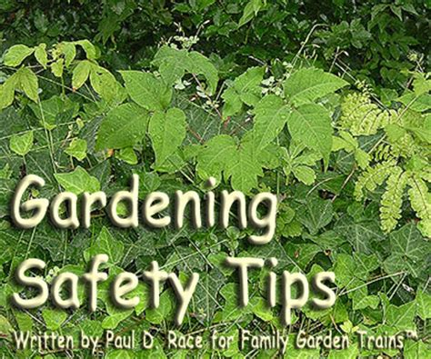 garden tips gardening safety tips